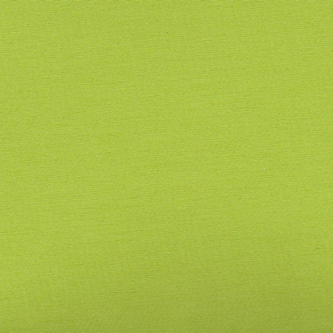CHINTZ apple green