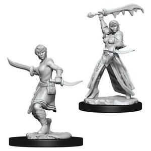 D&D Nolzur´s Female Human Rogue miniatuurid