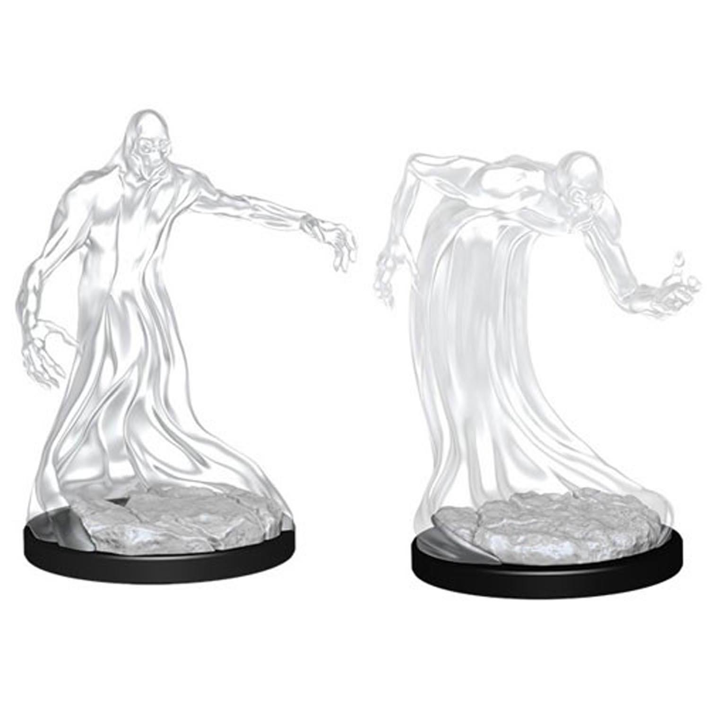 D&D Nolzur´s Shadow miniatuur