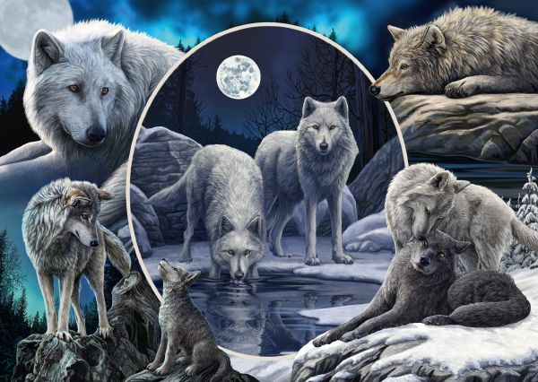 """Pusle """"Magnificent Wolves"""" 1000 tk"""