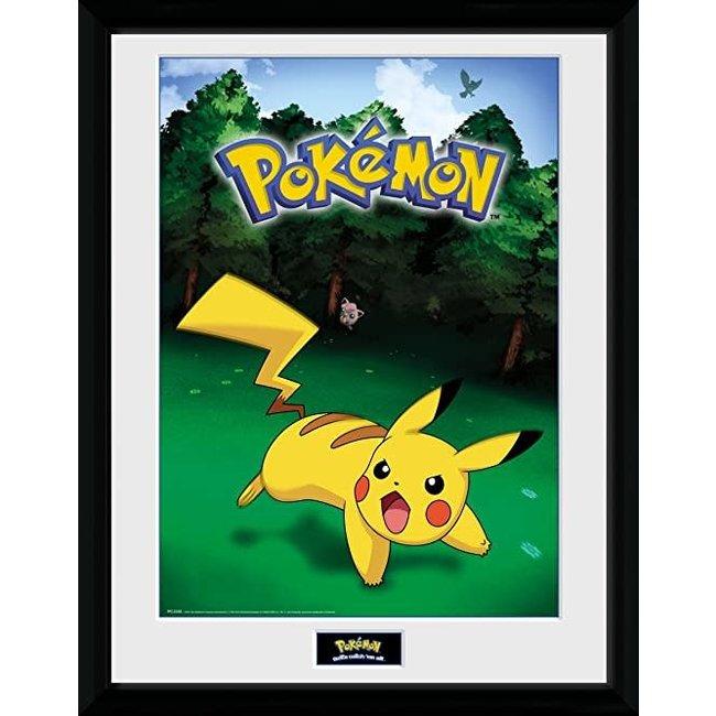 Pokémon Catch Plakat