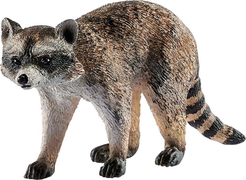 "Pusle ""Wild Life, Where the raccoons live"" 150 tk"