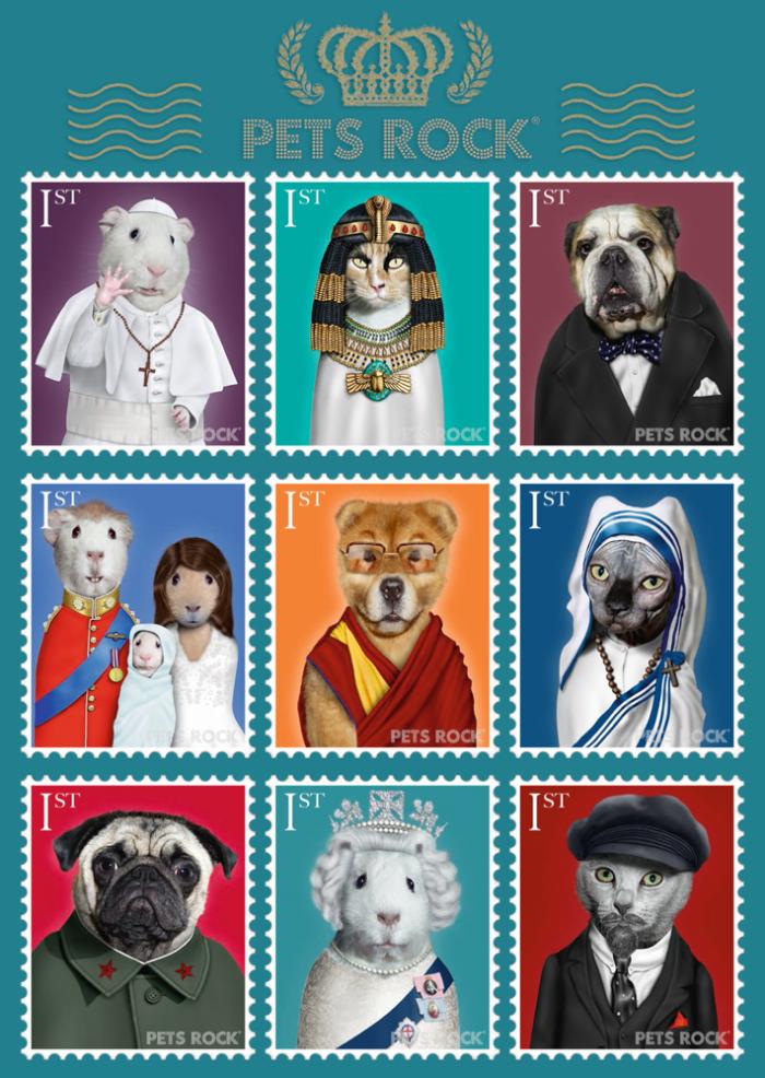 Pusle Pets Rock - History 1000