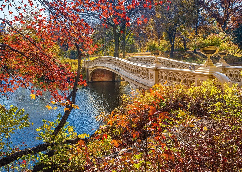 "Pusle ""A Stroll Through Central Park, NYC"" 1000 tk"