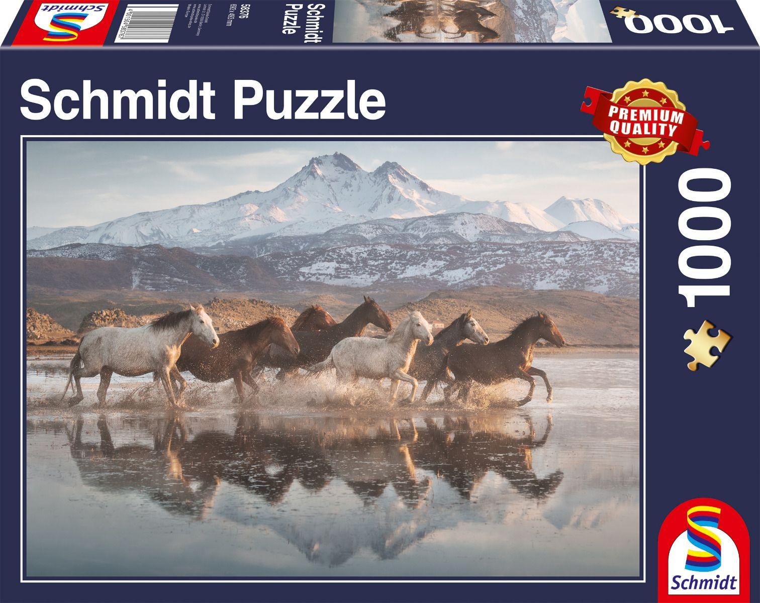 """Pusle """"Horses in Cappadocia"""" 1000 tk"""